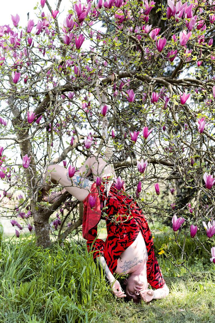Magnolia in Bloom // Caucasian Walk by 6v4MP1r36