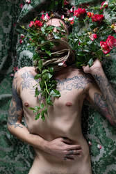 Venus in Thorns | 1