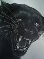 Black Panther by gtlowes