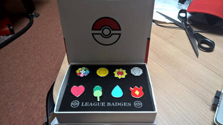 Kanto League - 8 Badges (Cosplay)