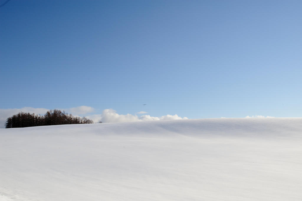 winter approach / RJEC / AirDo by kuroihikari