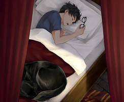 Harry Potter - Afternoon Nap