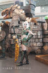 Night Elf cosplay World of Warcraft warrior tier 5