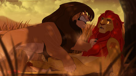 Unexpected meeting... Kopa and Kion