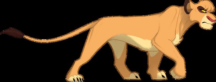 Adult Zimberi