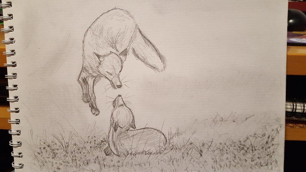 Foxies by kosko99