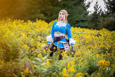 Zelda in the flower field, (Breath of the Wild) by Bamz-OSully