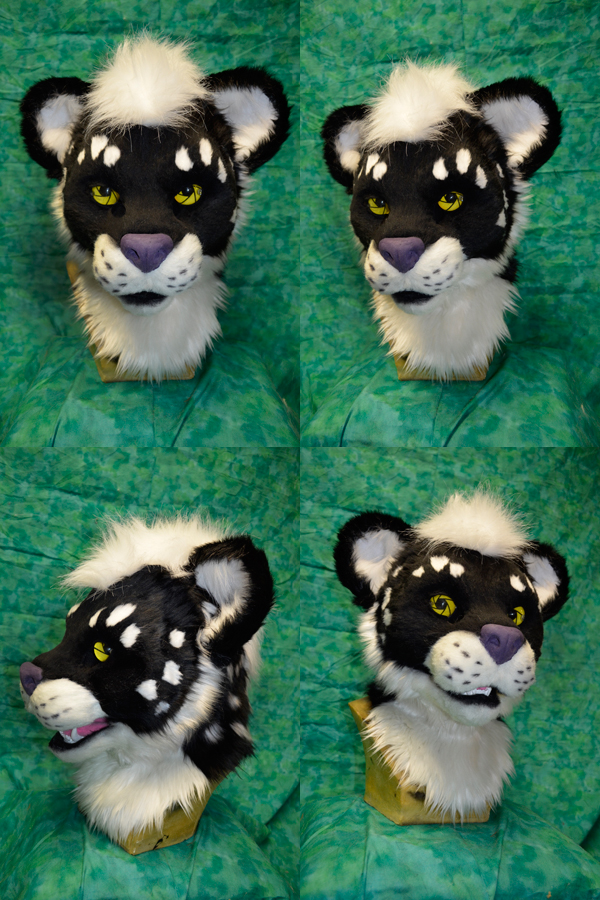 Ikani the leopard Head by temperance