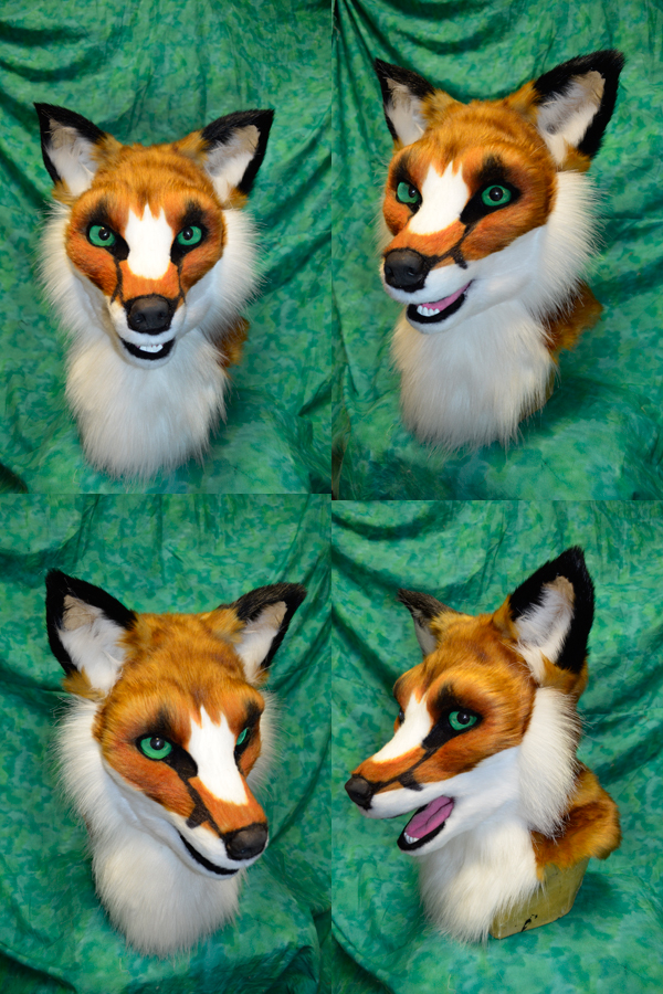 Reynard Fox Head by temperance