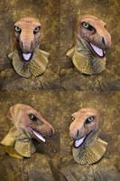 Raptor head by temperance