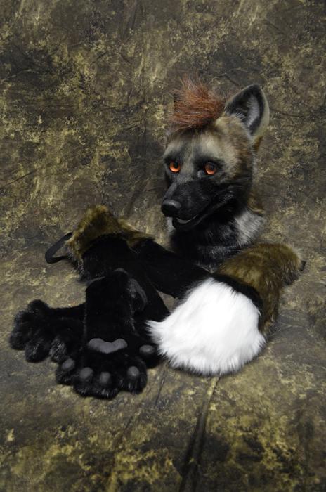 Cross fox Partial Vancoufur Art Show by temperance