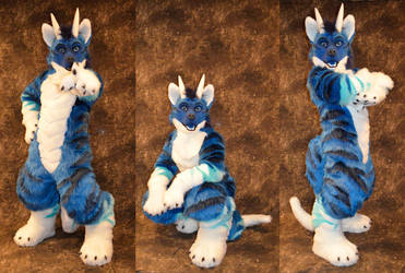 Intel the Wolf Dragon by temperance