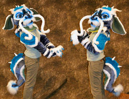 Chinese Dragon Partial by temperance