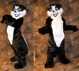 Ian the Skunk by temperance