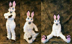 Whiteshadow Hare