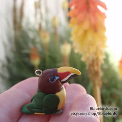Green Aracari by The-Wandering-Bird