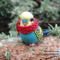 Winter Budgie by The-Wandering-Bird