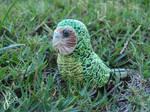 Kakapo Adventures: The Journey Begins by The-Wandering-Bird