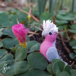 Pink Clover (Comm)