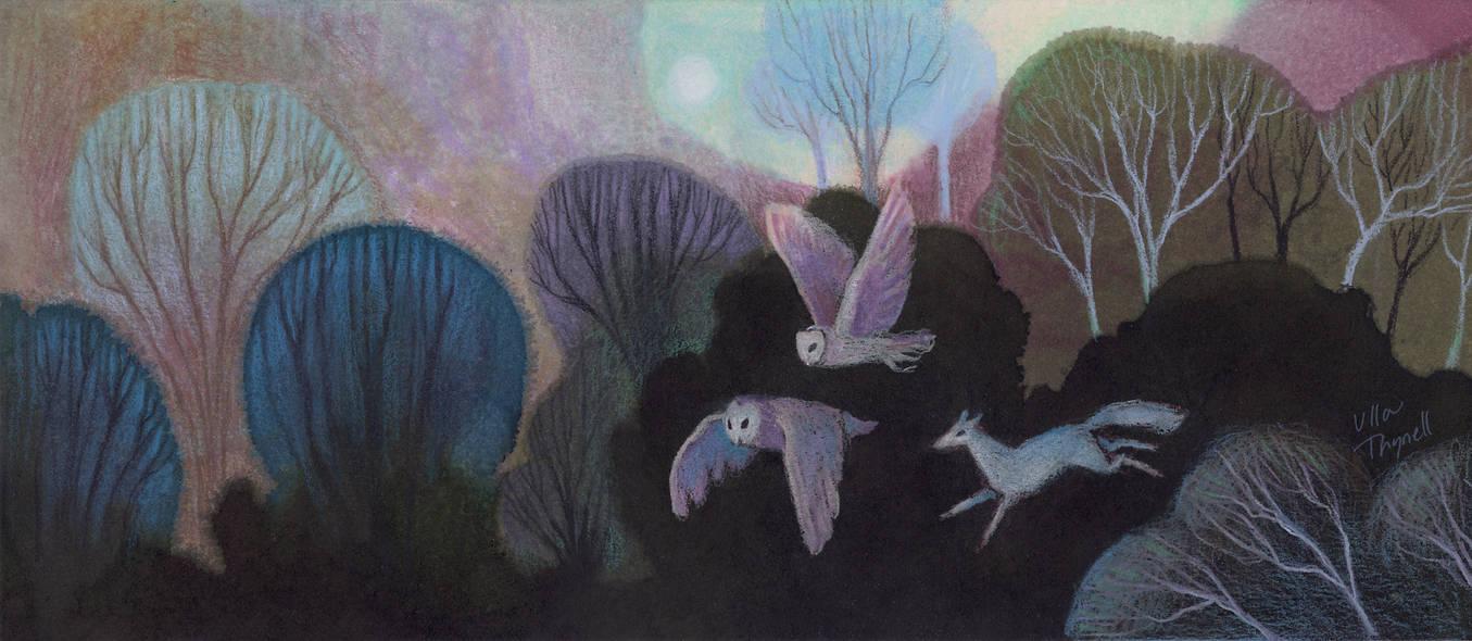 Owls by ullakko