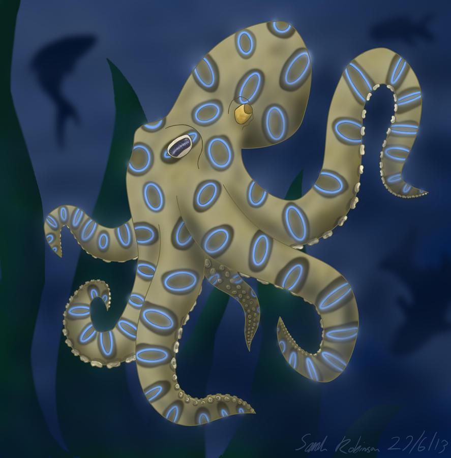 Ringston the Blue Ringed Octopus by Frogata on DeviantArt