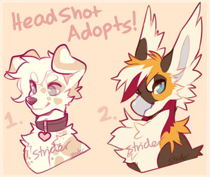 Headshot Adopts ! by Keybladefire
