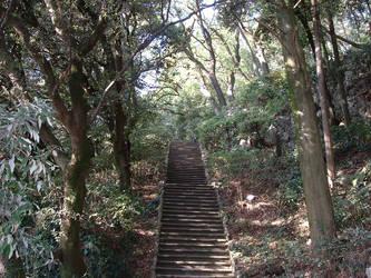 Serenity Stairs by zwammy