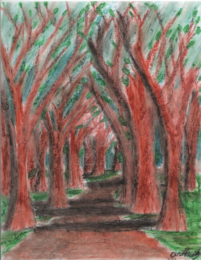 The path by YogoshimoMoritz