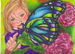 Kayla's Butterfly