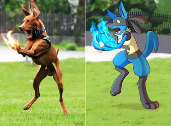When Lucario Uses Aura For The First Time by LucarioOcarina