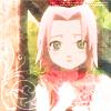 Cute Sakura Icon by YumeChan23