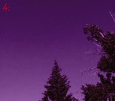 Purple Dreams by Luna-SlendersProxy