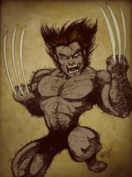 Wolverine Raw by gelipe