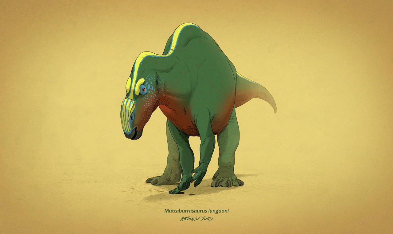 Dinovember #5 - Muttaburrasaurus langdoni by AntoninJury