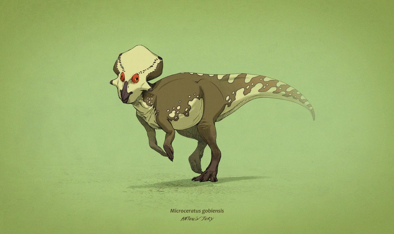 Dinovember #7 - Microceratus gobiensis by AntoninJury