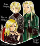 DH_Malfoy Family_