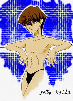 Seto Kaiba in da shower