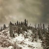 powder2 by Zyklotrop