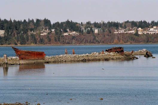 Royston Shipwrecks