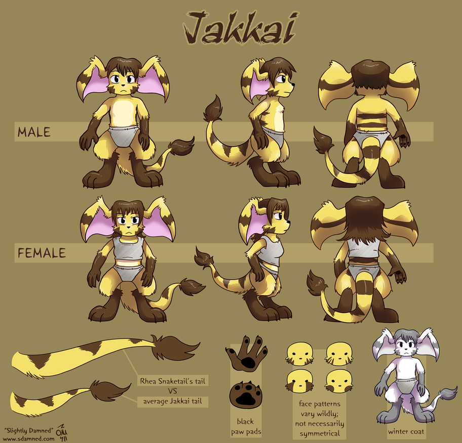 Jakkai Reference Sheet by raizy