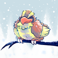 Chousen Pidgey by raizy