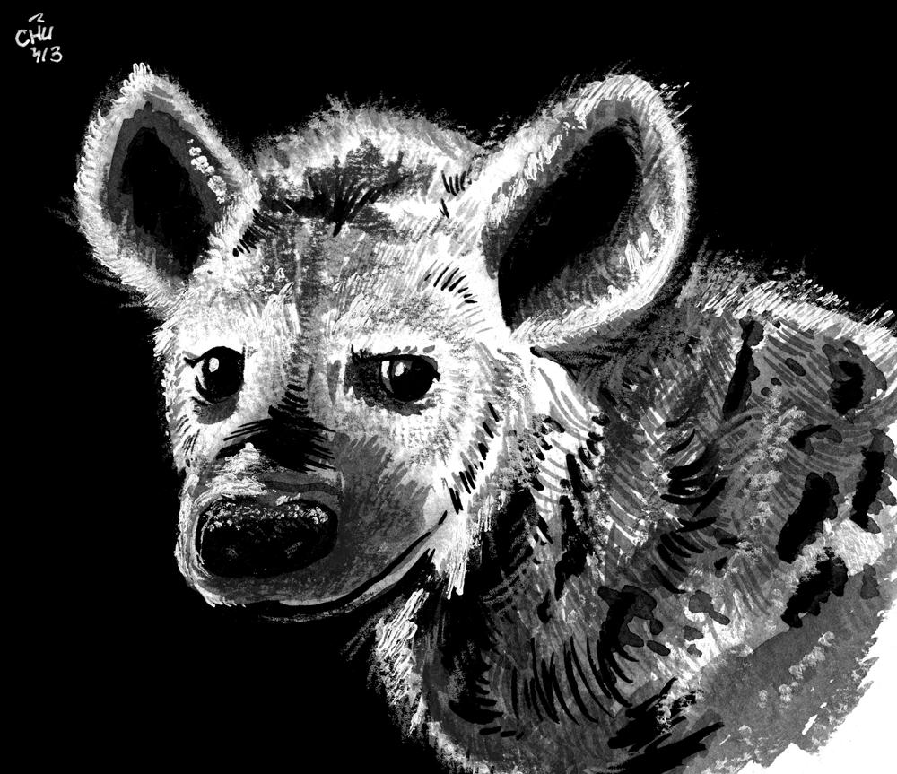 Fuzzy Hyena by raizy