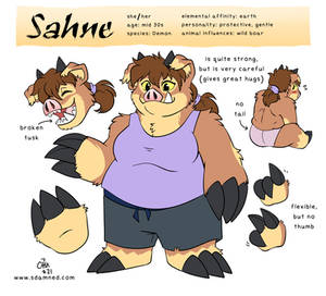 Sahne Reference Sheet 2021
