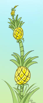 That's how pineapples grow.