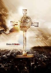Cross of brains