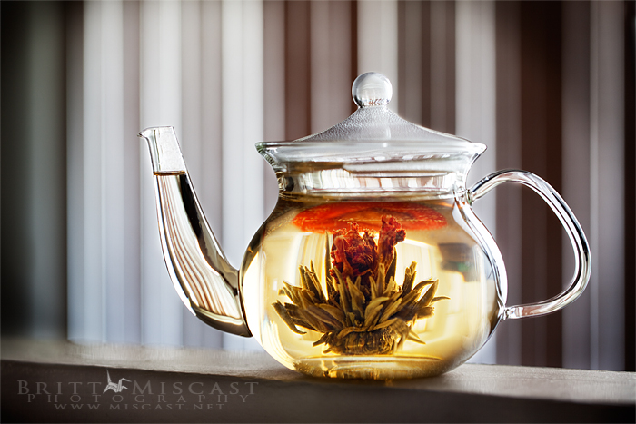 Blooming tea by brittmiscast on deviantart - Teavana glass teapot ...