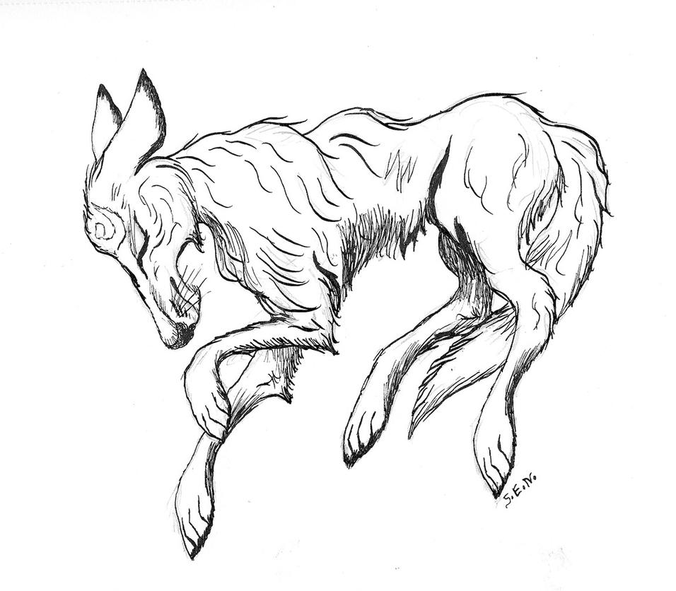Linktober Quest 4 - Coyote by Shadsie