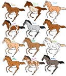 Foal Adoptables!