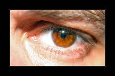 The Eye by iguanameenie