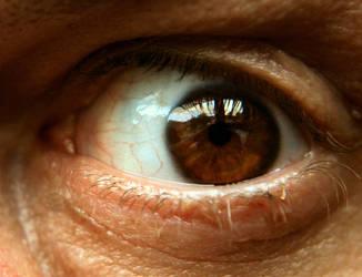 eye2 by iguanameenie